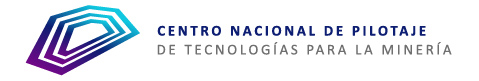 Logotipo CNP web